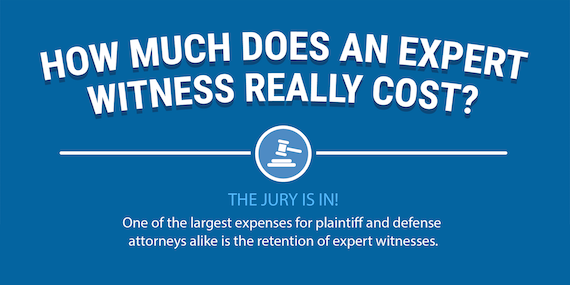 expert witness fees