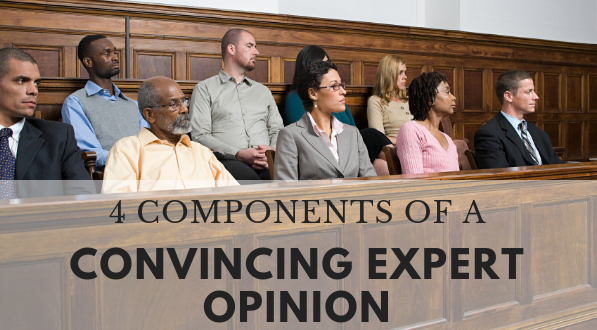 Components of a convincing expert opinion