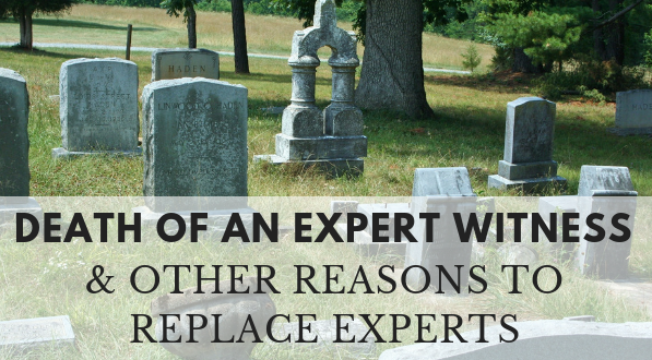 What to do with the death of an expert witness